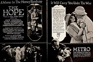 The Hope (1920 film) - Image: The Hope (1920) Ad 1