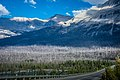 The Icefields Parkway (33152590474).jpg