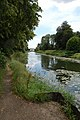 The Old River Ancholme - geograph.org.uk - 514709.jpg