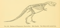 The Osteology of the Reptiles-310 vg j.png