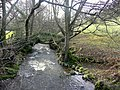 The Rhiangoll north of Cwmdu - geograph.org.uk - 1123121.jpg