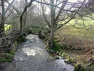 Rhiangoll river in Powys, Wales