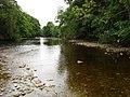 The River Ure at Ulshaw - geograph.org.uk - 371743.jpg