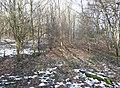 The former line of Blake Law Lane, Clifton - geograph.org.uk - 1157261.jpg