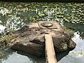 Thirunelli Maha Vishnu temple water tank square and circle icons.jpg