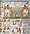Tomb of Nakht (8).jpg