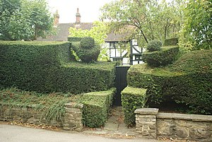 West Clandon - Topiary is seen in some of the properties in the village, which has a garden centre in its main parkland estate and a long history of landscaping.