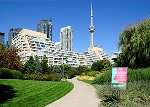 Harbourfront (Toronto) - Looking north from the Toronto Music Garden and King's Landing Condominium
