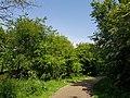 Tottenham Marshes 20190422 124429 (32724440787).jpg