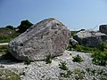 Tout Quarry Sculpture Park - geograph.org.uk - 1345506.jpg