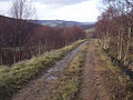 Track near Allanreid - geograph.org.uk - 1591847.jpg