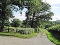 Track to Derwendeg Farm - geograph.org.uk - 1421741.jpg