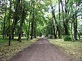 Trebisov Andrassyovsky kastiel (park)-34.JPG