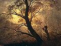 Trees in the moonlight.jpg