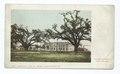 Tulane Univ., New Orleans, La (NYPL b12647398-62249).tiff