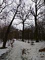 Turbiv park 119.jpg