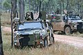 Two Bushmasters during October 2010.JPG