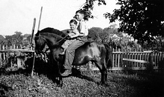 Marion County, Iowa - Image: Two Farmboys on pony, 1937