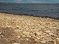 Tylihul beach.jpg