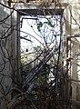 Tyre KhanRabu-Ruins OvergrownWindow RomanDeckert21112019.jpg