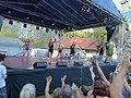 UFO a Balaton Fesztiválon.jpg