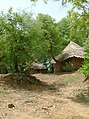 UNESCO Niokolo-Koba National Park Senegal (3686575593).jpg