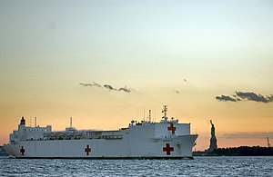 United States Naval Ship - Image: USNS Comfort Statue of Liberty