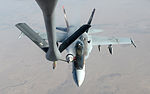 US Navy F-18E Super Hornets supporting operations against ISIL 141004-F-FT438-298.jpg