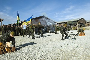 Ukraine soldiers from the 79th Airmobile Brigade on Camp Bondsteel, Kosovo 2010.jpg