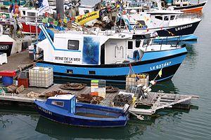 Un chalutier de pêche côtière (72).JPG