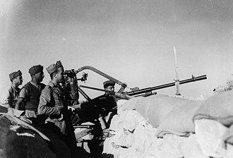 Siege of Tobruk - Image: Un mulo nelle linee retrostanti al fronte di Tobruch nell 1941
