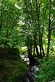 Vallée De Misère RoCroy 44412 ruisseau la Murée.jpg