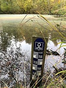 Poissons dans l'étang en ligne datant