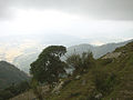 View on a mountains and valley from Bir-Billing (03).JPG