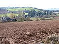 View to Orcop Hill - geograph.org.uk - 1165192.jpg