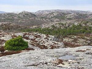 Vikna - Vikna landscape in spring. 2009.