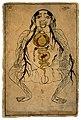 Viscera with fetus in utero, watercolour, Persian, 19th C Wellcome L0020503.jpg