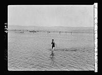 Visit of H.R.H. the Crown Prince of Sweden in December 1934. H.R.H. bathing in the Dead Sea LOC matpc.18633.jpg
