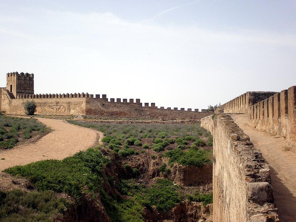 Vista desde el adarve dela Alcazaba de Badajoz