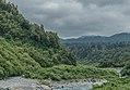 Waikukupa River.jpg