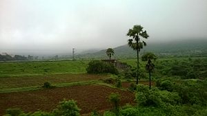 Palakkad Gap - Image: Walayar as seen from line