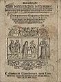Warachtighe Ende verschrickelijcke beschrijvinge van vele Toovenaers ende Toovenerssen pft vandoysen, hoe ende waerom men die herwaerts ende ghentswaerts verbrandt heeft in dir tegenwooedich Jaer 1589 (1).jpg