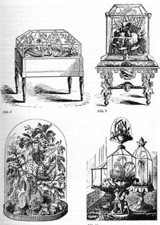 Vivarium - Nathaniel Bagshaw Ward first introduced Terrarium and Vivarium in 1842, built mainly from glass and wood.
