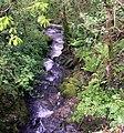 Waterfall at Pontfaen - geograph.org.uk - 1313320.jpg