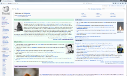 Waterfox (unmodified) screenshot.PNG