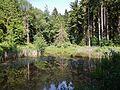 Weiher - panoramio (9).jpg