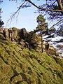 Whelp Stone Crag - geograph.org.uk - 163926.jpg