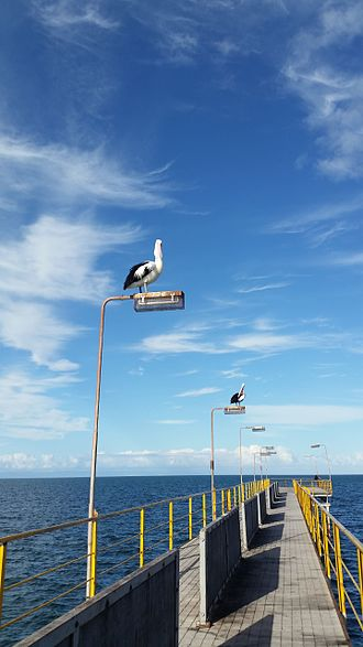 Whyalla - Image: Whyalla Jetty