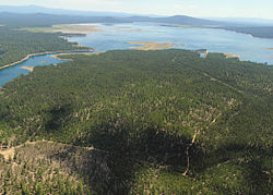 Wickiup reservoir swart odfw (15461748332).jpg