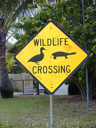 Wildlife observation - An example of a wildlife crossing sign